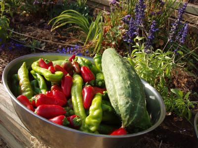 Summer-produce