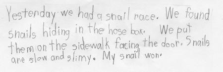 Snail-race-story